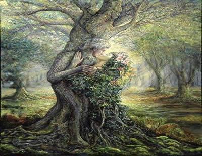 dryad在罗马,希腊神话中意指森林女神,传说每一棵橡树都居住着精灵图片